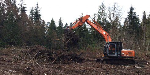 pearson-excavating-005
