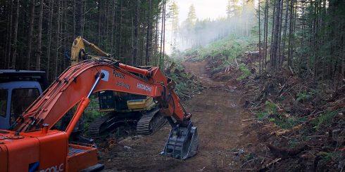 pearson-excavating-006